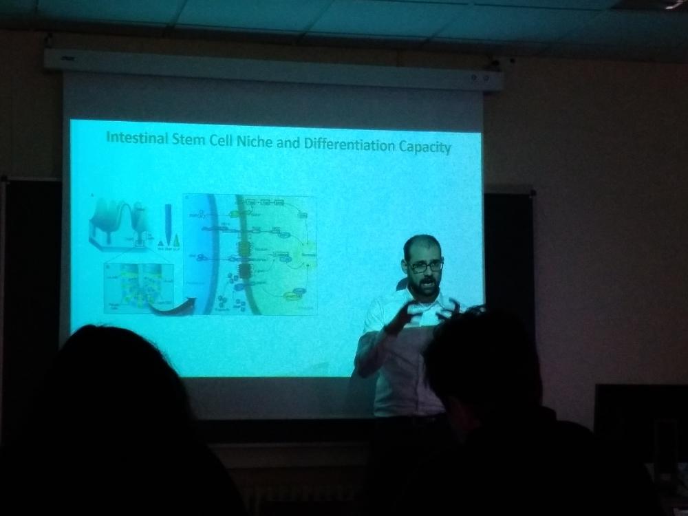 Curso de organoides - Foto 10