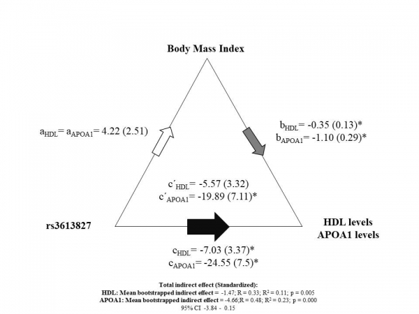 Imagen blog de Linking APOA2 rs3813627 SNP to HDL and APOA1 through BMI